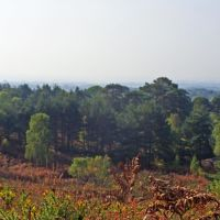 Horizon from Canford Heath, Ватерлоо