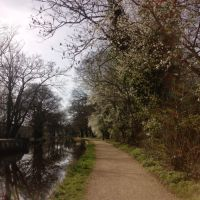 Spring in Woking, Вокинг