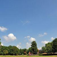Elms Field, Wokingham, Вокингем