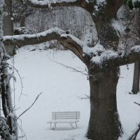 Winter bench in Tueley Lane, Годалминг