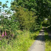 Private Road, Голборн