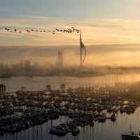 Portsmouth Spinnaker Tower  with Geese ~ the shot taken from Gosport, Госпорт