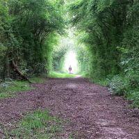 Path, Грисби