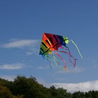 Kite in Royden Park, Грисби