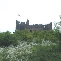 Dudley Castle, Дадли