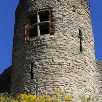 Dudley Castle II, Дадли
