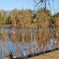 Dartford Lakes, Дартфорд