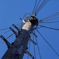 Telegraph Pole, Дерби