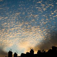 Whispy Clouds, Дерби