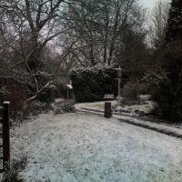 Snowy Cannock, Каннок
