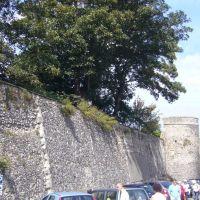 Wall, Кентербери