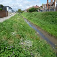 189. bawsey drain, loke road, north lynn. kings lynn, norfolk. aug. 2011., Кингс-Линн