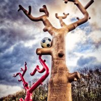 Steel Trees., Корби