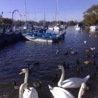 River at Christchurch, Кристчерч
