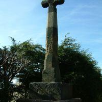 Cross, Кросби