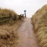 Crosby dunes, Кросби
