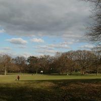 Goffs Park, Кроули