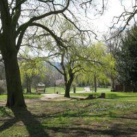 Lincoln arboretum, Линкольн