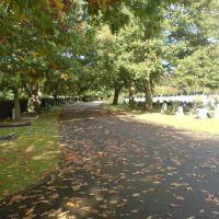 Randalls Park, Leatherhead, Литерхед
