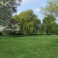 Festival Gardens, Личфилд