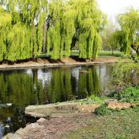 Wardown Park Lake, Luton (1), Лутон