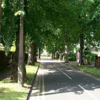 East Road, Майденхед