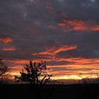 Tingley sunset, Морли
