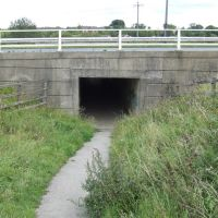 Footpath Tunnel Under the M621 Motorway, Морли