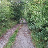 Public Footpath through Hill Top Farm, Морли