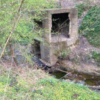 Bunker Dean Wood, Морли