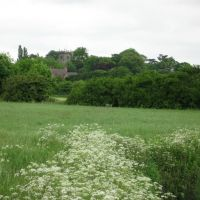 Church of St.Botolph at Sibson from near Eightlands Farm, Нортфлит