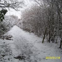 Looking up footpath N31 towards Barry Way, from Newport-Cowes cycletrack 18 Jan 2013, Ньюпорт
