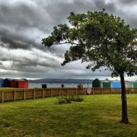 tree and beach huts, Пул