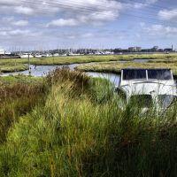 hidden in the reeds, Пул