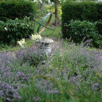 Goltho Gardens, Рагби
