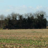 Wickenby firing range butt wall., Рагби