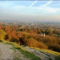 View from Reigate Hill, Рейгейт