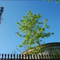 Radio mast on Reigate Hill, Рейгейт