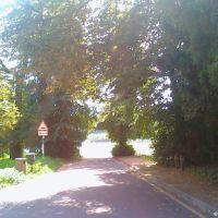 Entering Priory Park, Рейгейт