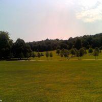Priory Park (2), Рейгейт