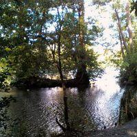 Priory Park Lake (8), Рейгейт