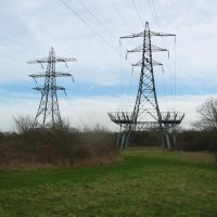 132kV Overhead line pylons at Wheatley Wood, Рейли