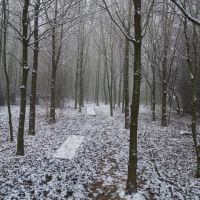 Sutton Meadow in Snow, Саттон-ин-Ашфилд