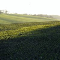 Sittingbourne fields, Ситтингборн