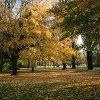 Scunthorpe Central Park, Сканторп