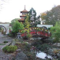 Chinese Garden, Скарборо