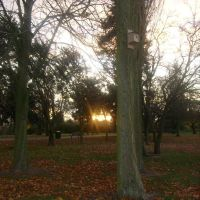 Newham Grange Sunset, Стоктон