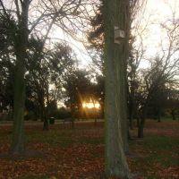 Newham Grange Sunset, Стоктон-он-Тис