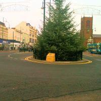 Xmas Tree Stockton, Стоктон-он-Тис