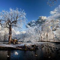 The Lake, Mary Stevens Park, Стоурбридж